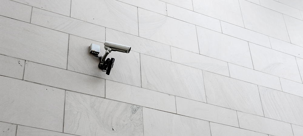Nuevo Boletín de Vigilancia Tecnológica e Inteligencia de Mercado